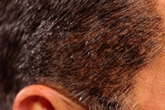 black-colored-gray-sideburns-closeup-picture